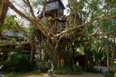 Прогулки по Паю. Дом на дереве (Pai Tree house)