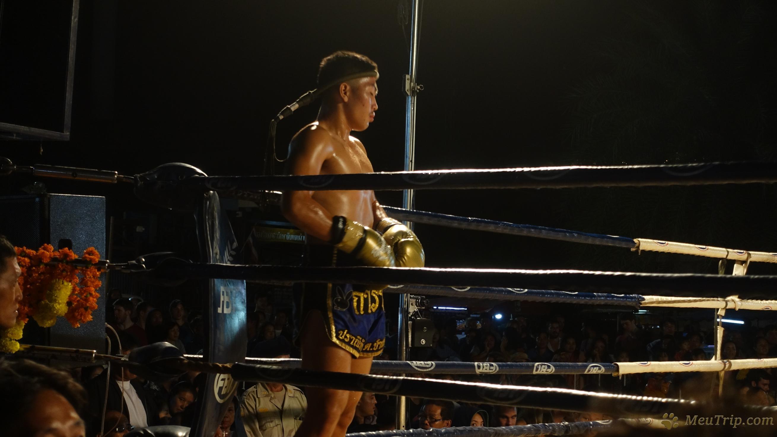 Муай Тай, таец против фаранга - кто победит?!